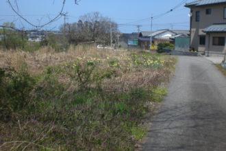 新潟市北区島見町字中道上 売土地(資材置場、駐車場)